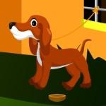 Garden Puppy Escape