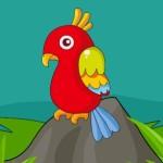 Macaw Parrot Escape