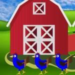 Farm 6 Escape