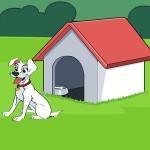 Home Pet Escape