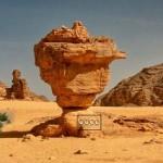 Escape From Sahara Algeria
