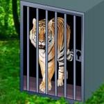 Tiger Escape 2