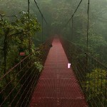 Escape from Monteverde Cloud Forest Reserve