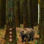 Bear Forest Escape Game