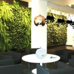 Plant Furnishing House Escape Game
