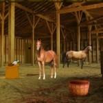 Horse Barn Escape Game