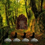 Mirchi Escape Mild Forest Game
