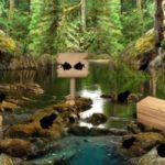Swamp Forest Escape